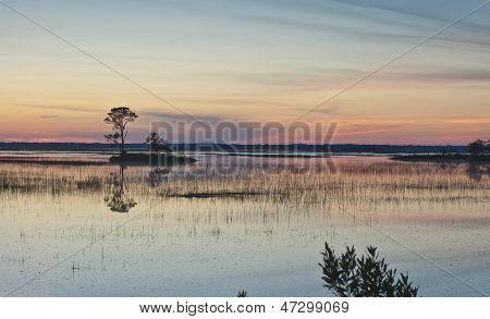 Hunting Island Sunset