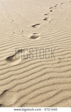 Foot prints on a desert land