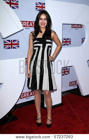Sophie Winkleman at GREAT Global Initiative Honors British Nominees Of The 84th Annual Academy Awards, British Consul General Residence, Los Angeles, CA 02-24-12