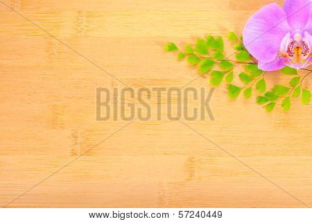 Lilac  Orchid And Leaves Of Fern On Bamboo Wooden  Background