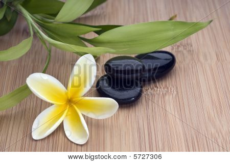 Spa Still Life, With Flower And Bamboo Leafs