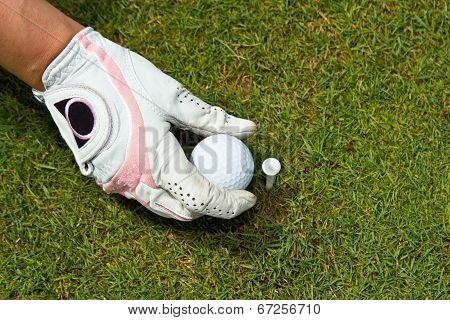 Close-up Of A Gloved Hand Of A Woman Golfer Placing Golf Ball On The Tee