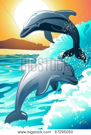 Two Dolphin Swimming At A Beach At Sunrise