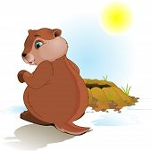 Illustration for Groundhog Day. Groundhog looking at his shadow. poster