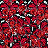 Beautiful Red Background Texture made of Common Tiger Butterflies in fancy color and patterns poster