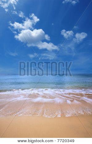 Beach Of Gold