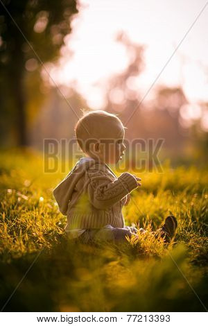 Cute Boy Toddler Sitting In The Grass