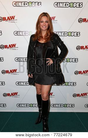 LOS ANGELES - NOV 18:  Alex Meneses at the CineDopes Web Series Premiere And Launch Party at the Busby's East on November 18, 2014 in Los Angeles, CA