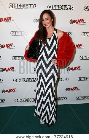 LOS ANGELES - NOV 18:  Tanya Norman at the CineDopes Web Series Premiere And Launch Party at the Busby's East on November 18, 2014 in Los Angeles, CA