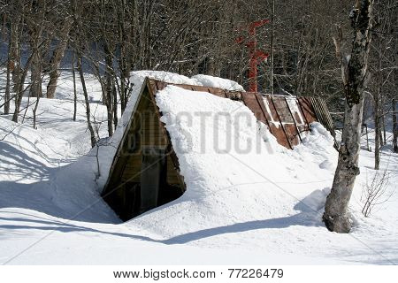 Snow-covered Shed