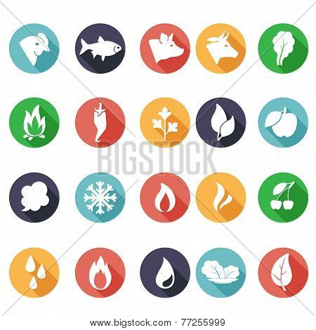 Animals, leaves, fire, frost, steam, water icons. Flat style