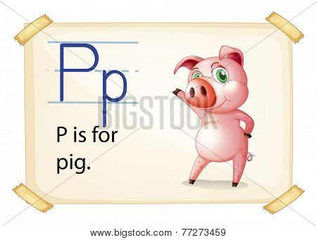 A letter P for pig on a white background