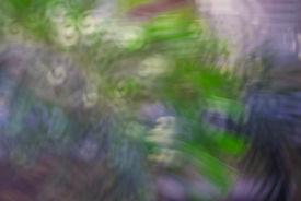 Abstract Circular Bokeh
