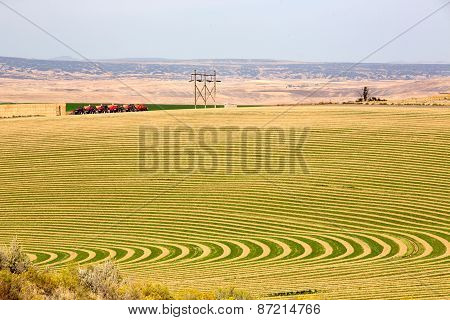 Farm With Contoured Planting For Pivot Irrigation