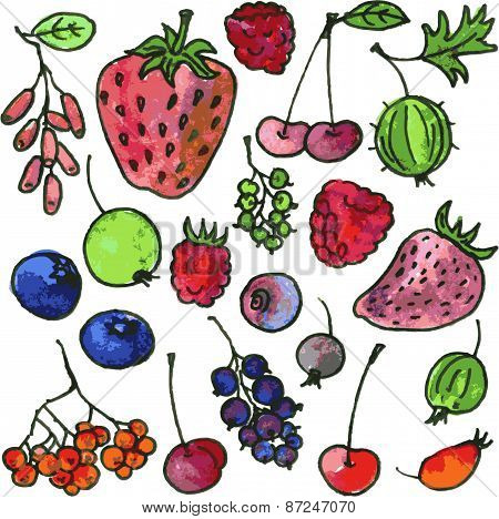 vector set of watercolor drawing cartoon berries