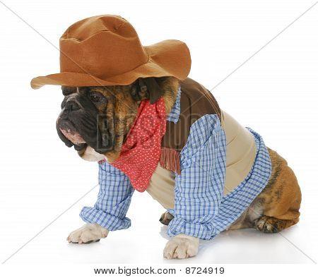 Dog Dressed Up Like A Cowboy