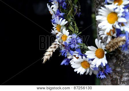 Wreath Of Daisies And Cornflowers On A Black Background