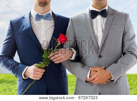 people, homosexuality, same-sex marriage and love concept - close up of happy male gay couple with red rose flower holding hands on wedding over blue sky and grass background