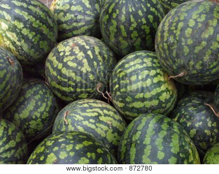 Watermelons With Tails