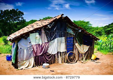 Third World House