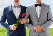 people, homosexuality, same-sex marriage and love concept - close up of happy male gay couple with red rose flower holding hands on wedding over blue sky and grass background poster
