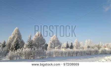 Winter Siberia