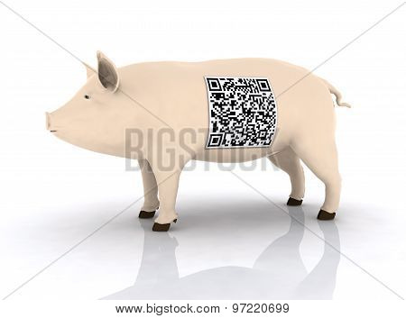 Pig With Qr Code