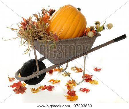 A rustic wheelbarrow full of fall foliage and a large pumpkin.  Colorful fall leaves have fallen around the wheelbarrow.  On a white background.