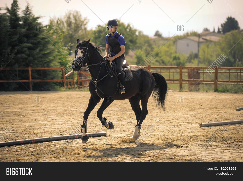 Equestrian Sports Image Photo Free Trial Bigstock