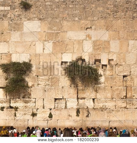 The Western Wall, Kotel or The Wailing Wall. The place where Divinity never departs. Female part. Israel Jerusalem