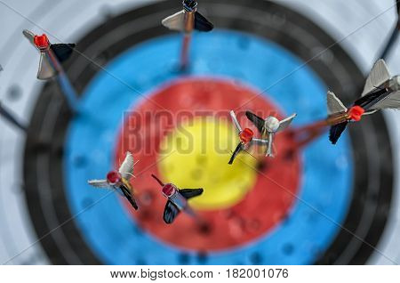 Closeup on arrows in target. Focus on nock. Shallow depth of field.