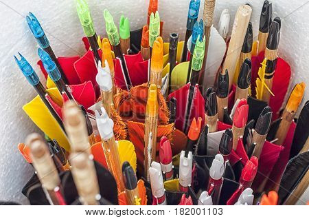 Closeup on a bunch of arrows stored in a tube.