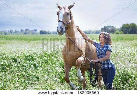 Woman training her horse at paddock. Horizontal photo