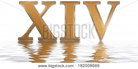 Roman Numeral Xiv, Quattuordecim, 14, Fourteen, Reflected On The Water Surface, Isolated On  White,