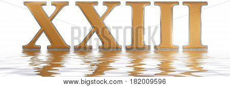 Roman Numeral Xxiii, Tres Et Viginti, 23, Twenty Three, Reflected On The Water Surface, Isolated On