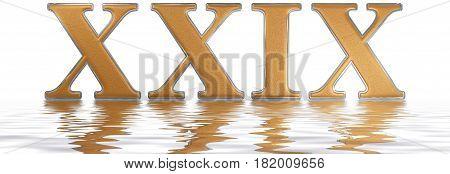 Roman Numeral Xxix, Novem Et Viginti, 29, Twenty Nine, Reflected On The Water Surface, Isolated On