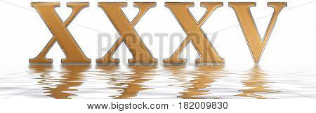 Roman Numeral Xxxv, Quinque Et Triginta, 35, Thirty Five, Reflected On The Water Surface, Isolated O