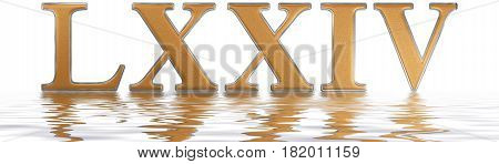 Roman Numeral Lxxiv, Quattuor Et Septuaginta, 74, Seventy Four, Reflected On The Water Surface, Isol