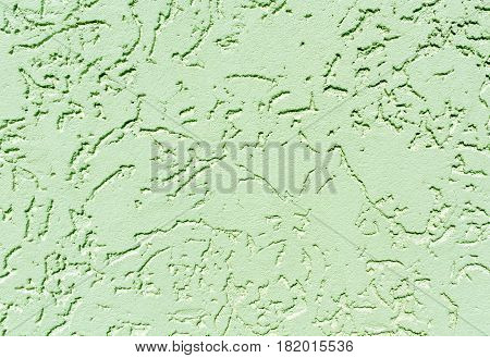 Green Color Plaster Wall Patten.
