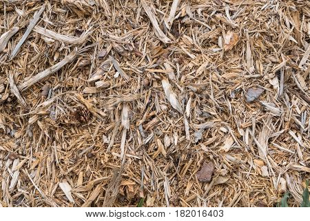 Wood scrap pile. Construction material. Wood texture background. Raw material. Uncompressed raw wood.