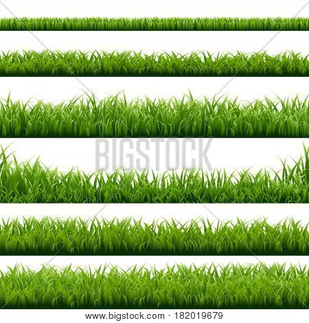 Big Set Green Grass Borders