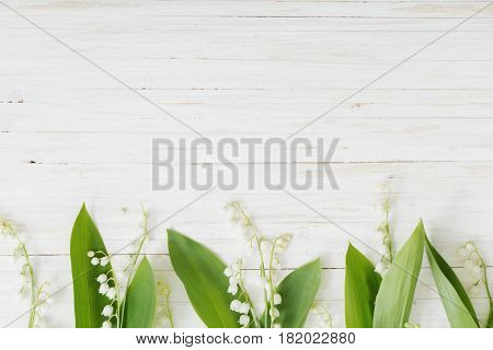 the may-lily flowers on white  wooden background