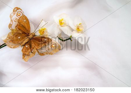 Decorative butterfly sitting against a white orchid