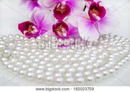 pearl and purple orchid on a white glass