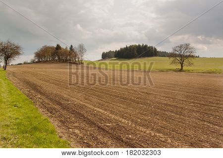 Sown fields in the Czech Republic. An overcast spring day in the fields