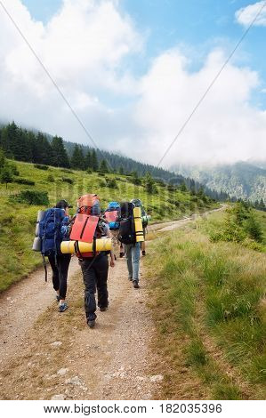 group of hikers with backpacks on a path through the forest in the mountains. Active holidays. Tourists trekking on dirt road. Healthy lifestyle, adventure, active leisure tourism and hiking concept