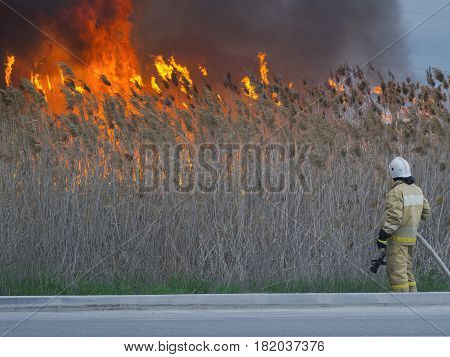 Firefighter looks and thinks how to extinguish the big fire