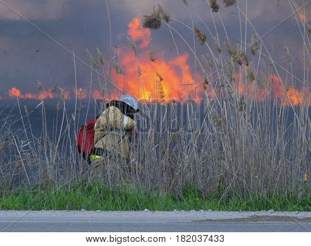 The firefighter extinguishes fire in the field