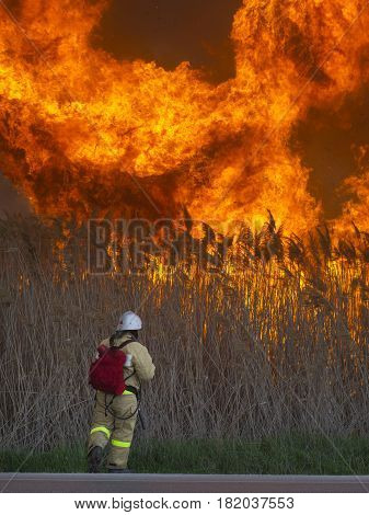 The brave fireman extinguishes a huge fire