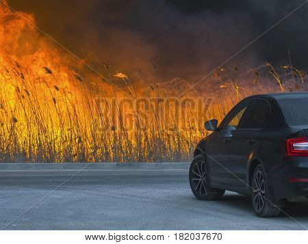 The car is about the huge dangerous fire